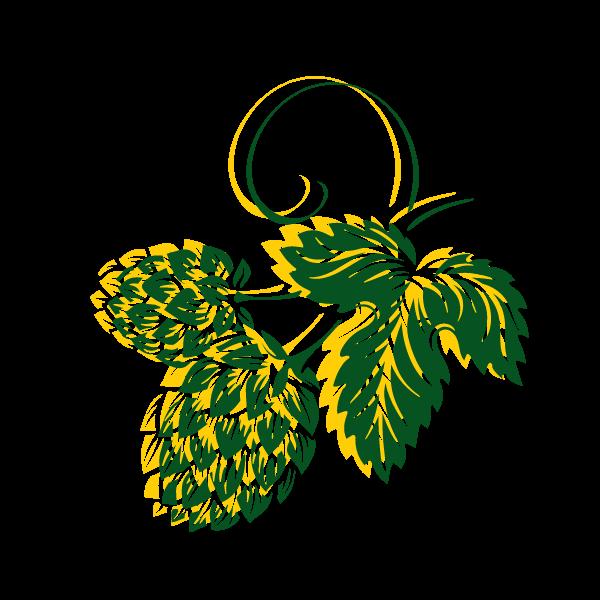Rund um Fränkisches Bier - Hopfen